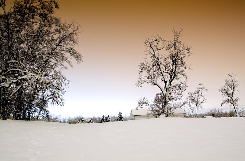 Cold winter night in Littleton, Colorado