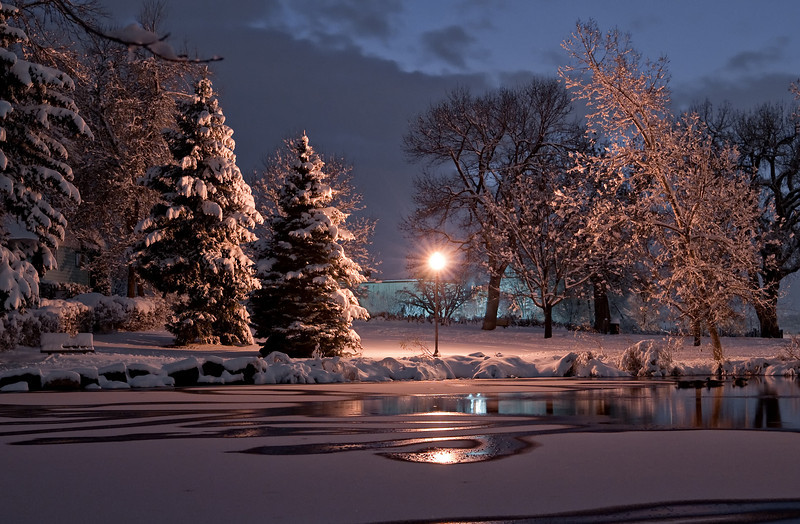 Sterne Park pond in the middle of winter,  Littleton, Colorado