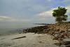 Rocky Neck Beach