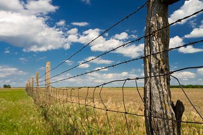 Rodgers-Pomeroy Pasture, KS