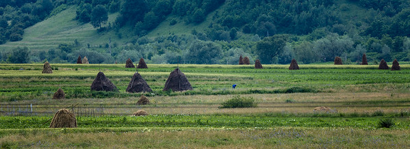 Haystacks in Transylvania