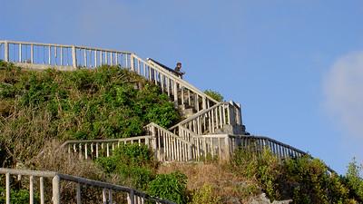 Bird sanctuary on Rota, CNMI