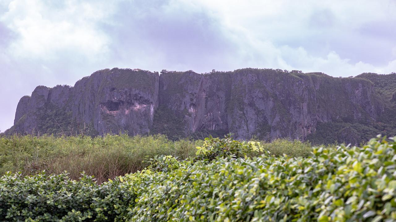 View inland from Banzai Cliff, Saipan, CNMI