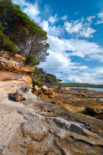 """""""Royal National Park Trees Sky, and Clouds at Sunset""""  Bundeena near Sydney, Australia.  Vertical.  Royal National Park, 1 hour South of Sydney near Bundeena. This was earlier in the afternoon at the coast at the Royal National Park. Just God's playground of rock textures, shapes and patterns. Add a rich blue and cloudy sky like that, mix in an ultra-wide angle lens that I love to use and you have a rockin' combination!"""