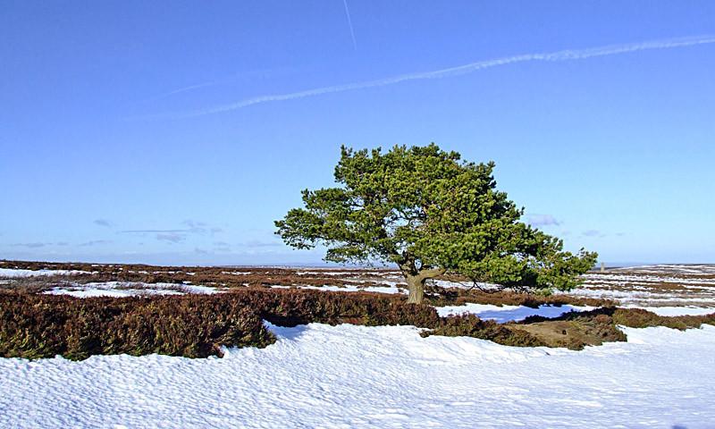 Blanchland