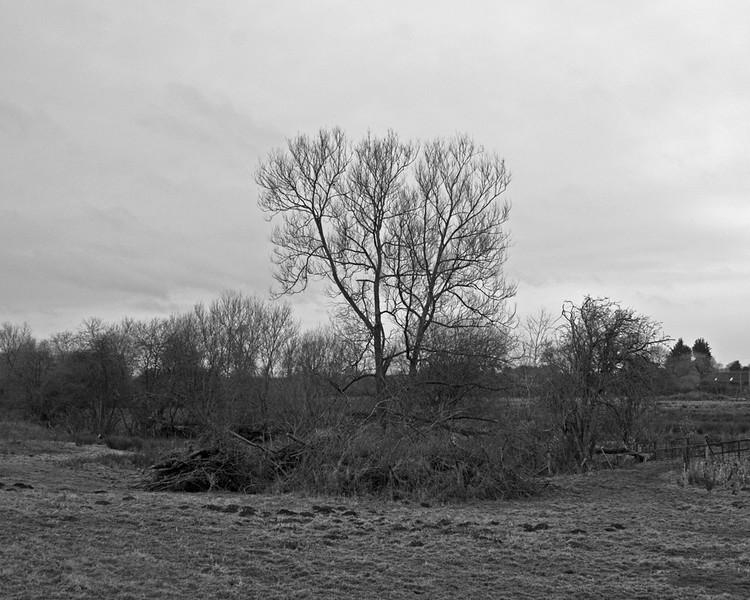 A scene in Hampshire