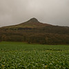 Roseberry Topping in Teeside