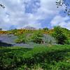 Powburn, Northumberland