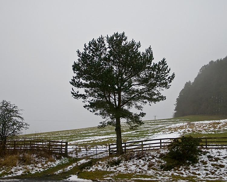 Border Country January 2016