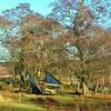 The Rothbury Haywain