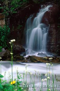 Bear Creek, San Juan National Forest, Colorado