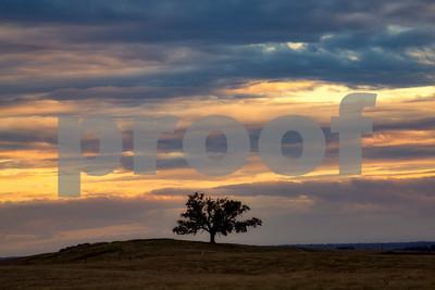Clearing Storm Lone Oak Folsom CA