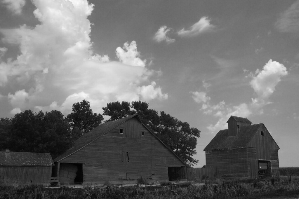 The Farm 3 - B&W