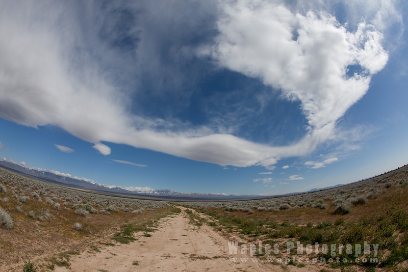 Fanciful Clouds, Fisheye