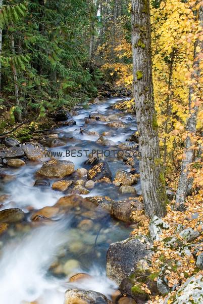 Tam O'Shanter Creek