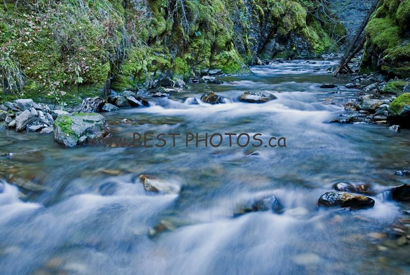 Davis Creek