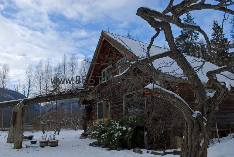 Argenta homestead cabin