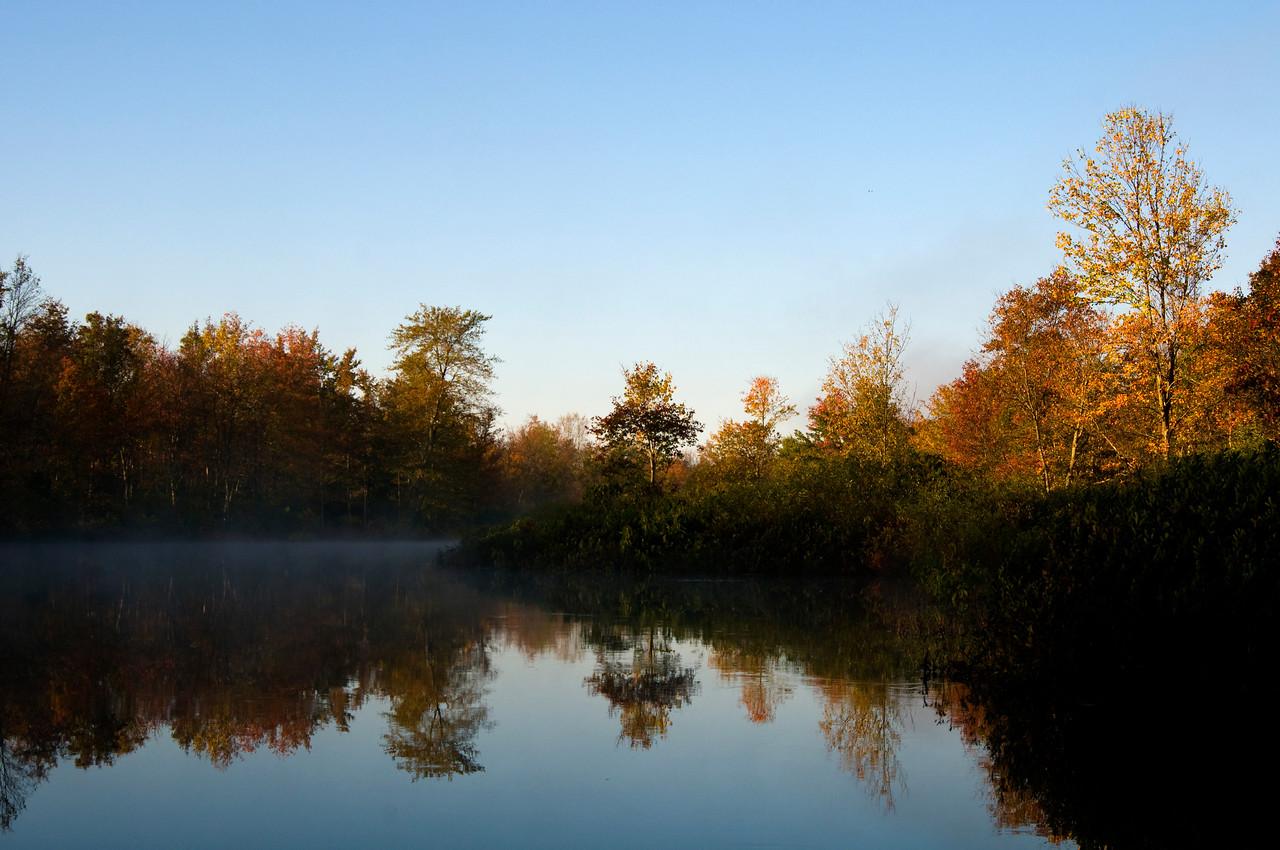 Nine Mile Swamp, Hubbardsville, NY