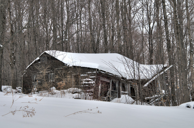 Southern Madison County Handyman Special.  I considered this as a photo of the day for January 25, but decided on a photograph of the Chenango River not far from this cabin.