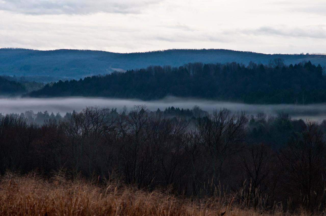 Valley Fog in Columbus