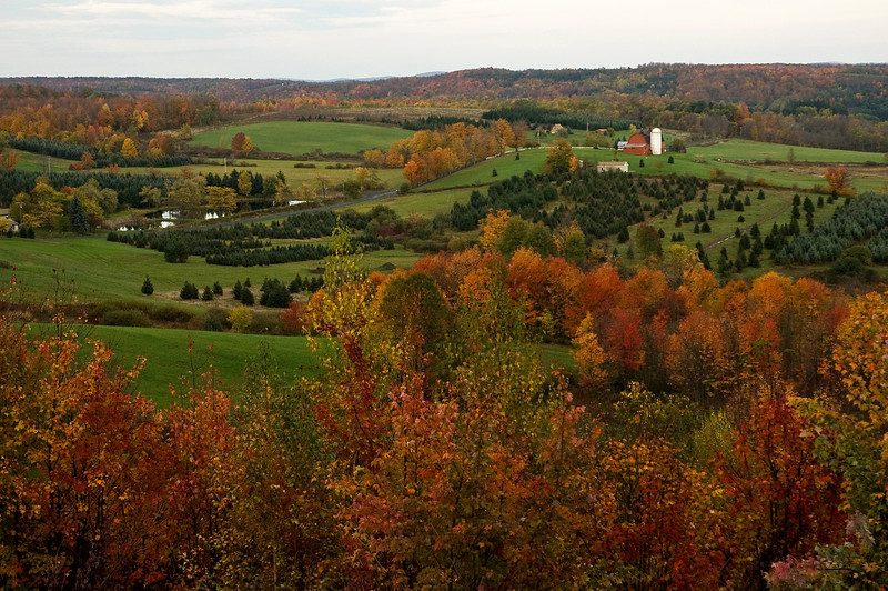 Fall in the Town of Columbus, NY