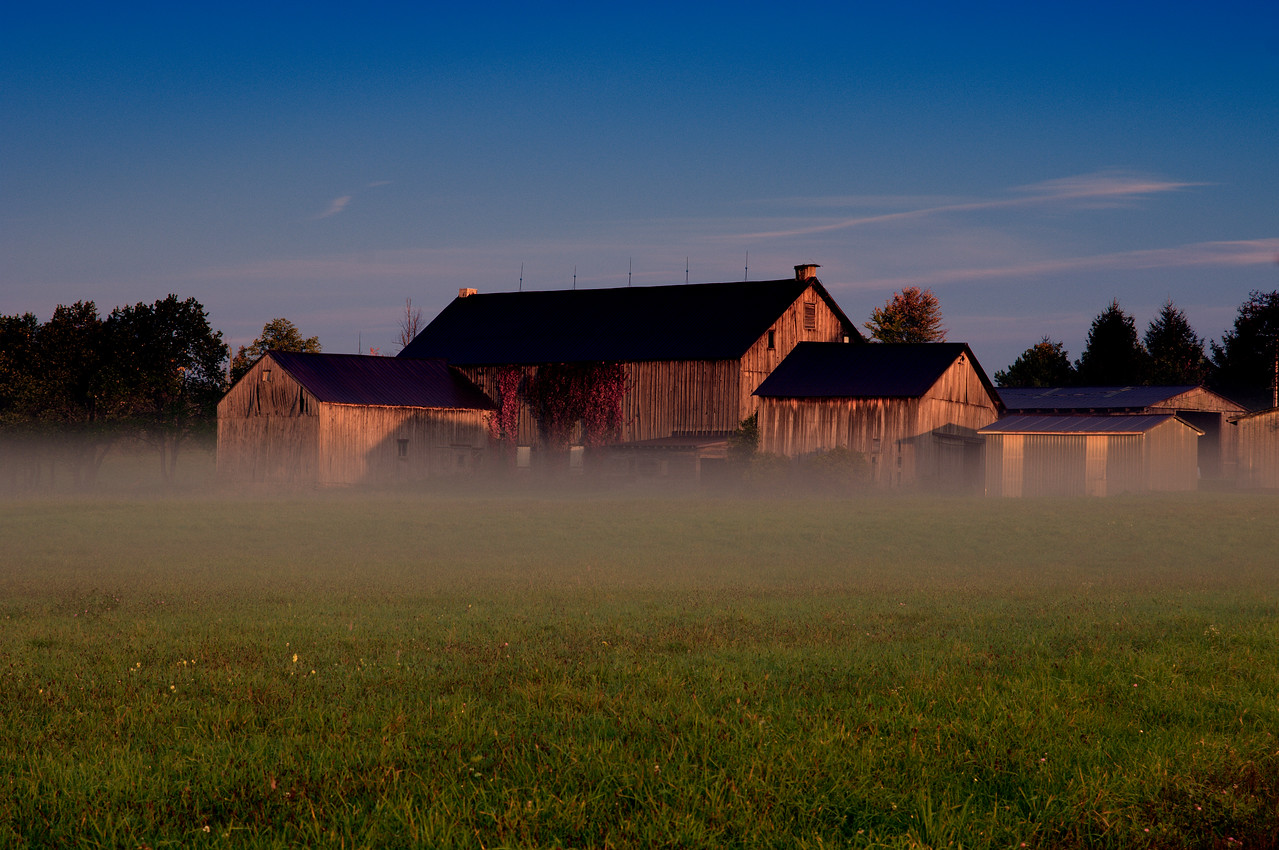 """Morning light with fog around the """"block"""" from my place."""