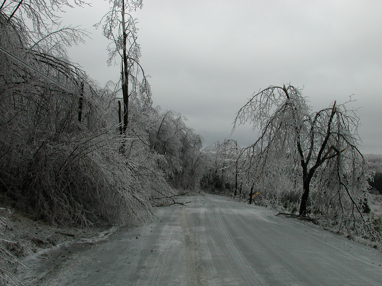 Ice Storm at home