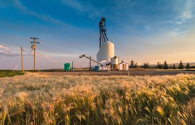 Emerson Trail, near Grande Prairie