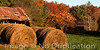 Farmscape - October 2012<br /> (1x2)