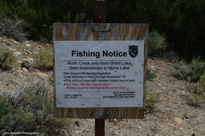 Rush Creek is the largest stream in the Mono Basin, carrying 41% of the total runoff into Mono Lake.
