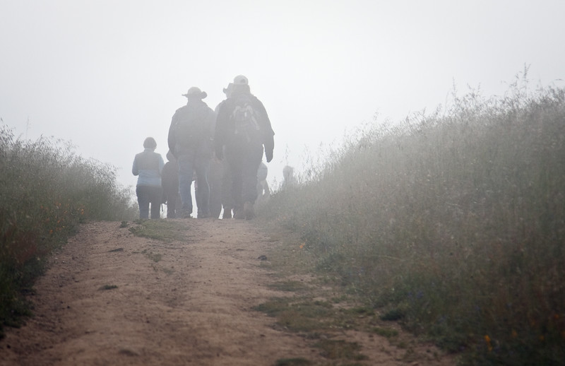 A docent-led group of hikers passed by as I was setting up to take my first photo of the day.