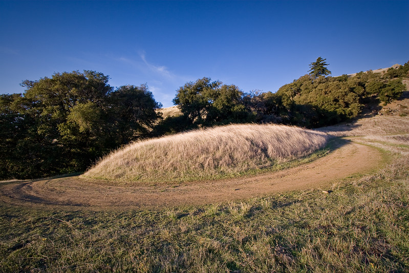Russian Ridge crop circle. ;-) Thanks to Shalimar who pointed out this formation on Hawk Trail.