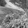 Bugaboo Glacier Seracs