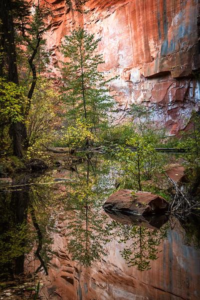 Image along West Fork of Oak Creek