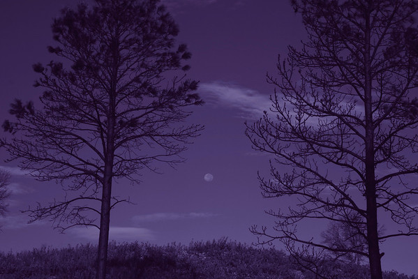 Moonset, Ruidoso, NM