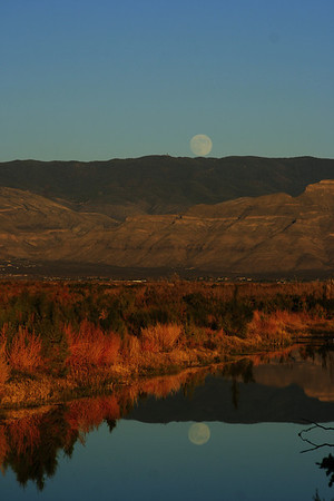 Moonrise reflection, near Lucero Lake, White Sands National Monument, New Mexico