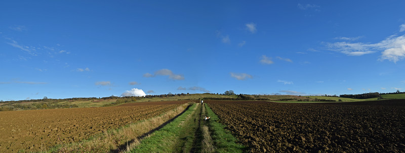 A 2 shot photomerge panorama looking East up across the fields towards the low ridge of Lincoln Edge. We like to get up on the ridge and once there could walk for miles admiring the views