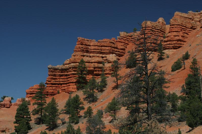 Red Canyon    Utah  2007