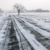 WINTER, PIN OAK ROAD<br /> It was as cold and windy as it looks in this picture.<br /> <br /> Date: January 7, 2010<br /> Exposure: 1/250<br /> Aperture: f/8<br /> ISO: 100<br /> Focal Length: 55 mm<br /> (Click image to enlarge)