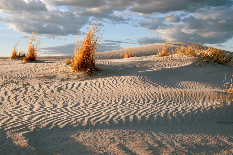 Early morning or late afternoon is the best time to photograph the sand dunes.  The low angle of light casts more dramatic shadows than mid-day light.