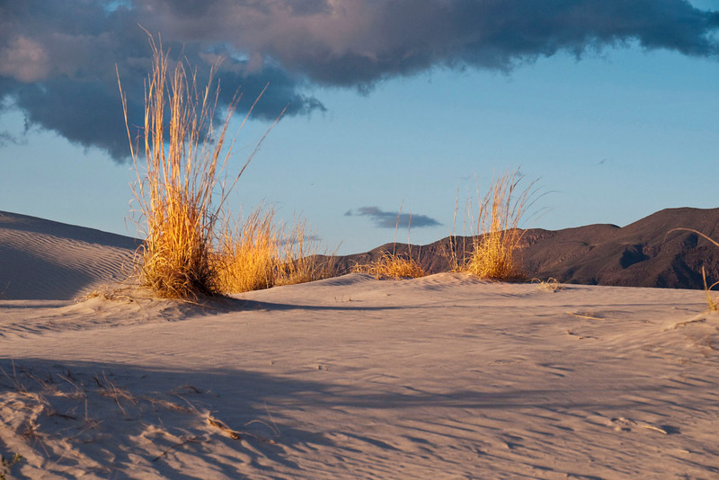 It takes about 2 hours to get from Carlsbad to the parking area.  You stop at the Pine Springs visitor center in the Guadalupe Mountains National Park and get a key to the gate.  The dunes are near Dell City, Texas.  From the parking area it is about a mile hike to the dunes and maybe 2 miles to the far side where you want to enter the sandy area.  This is where the biggest dunes are.