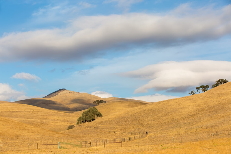 Typical Country Scenery In San Benito County.