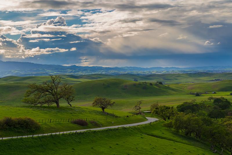 Spring in San Benito County.