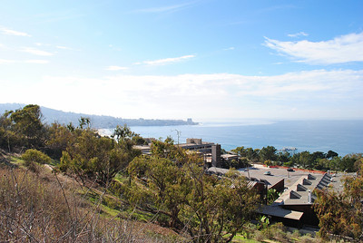 The Cove From Scripps