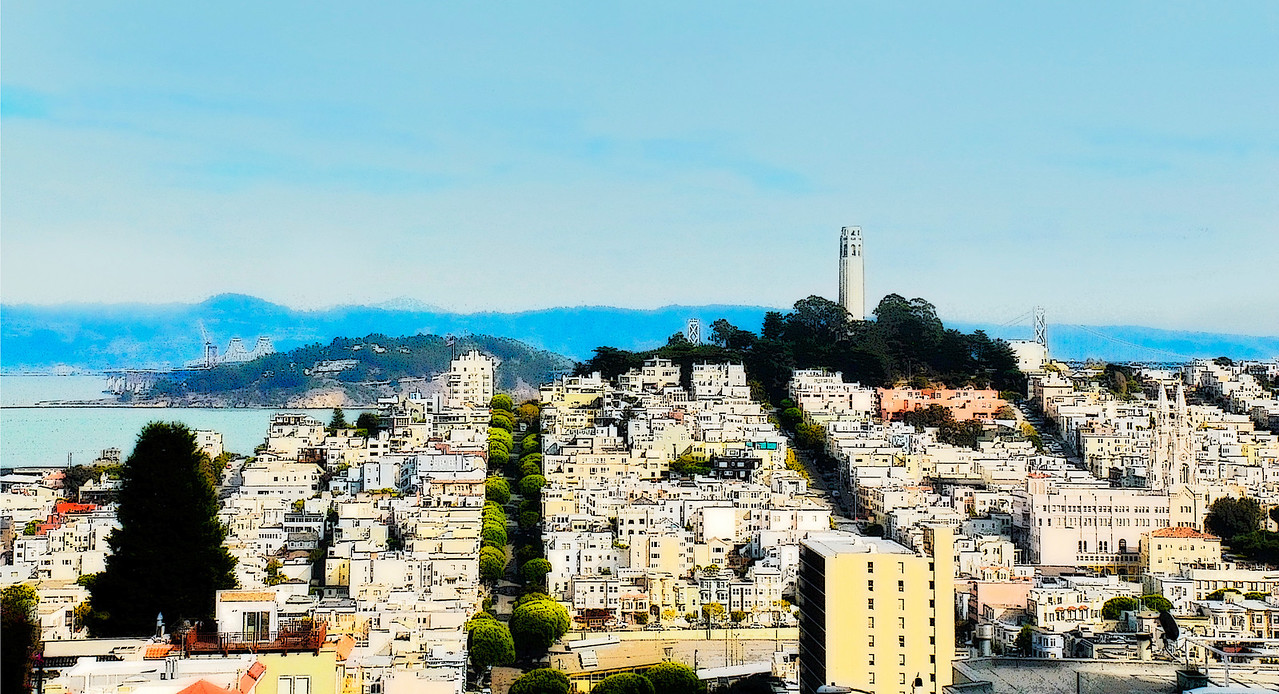 View of San Francisco from the top of Lombard Street.