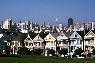 Classic Painted Ladies