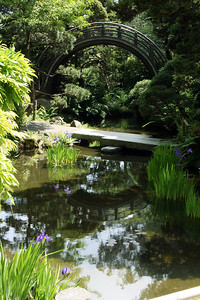 Japanese Tea Garden - Circular Bridge