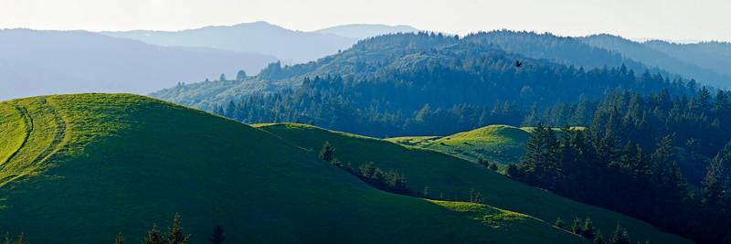 19) Bolinas Ridge 200904041844
