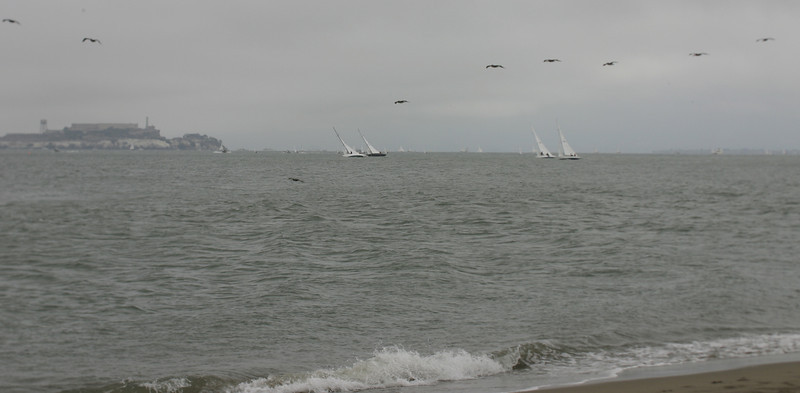 Sailboats & Alcatraz, Crissy Field, San Francisco, June 2008