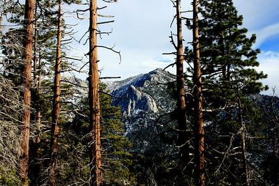 Lily Rock, Tahquitz Peak San Jacinto Mountains, Suicide Rock Trail 27 Nov 2010